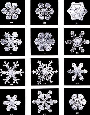 375px-SnowflakesWilsonBentley.jpg