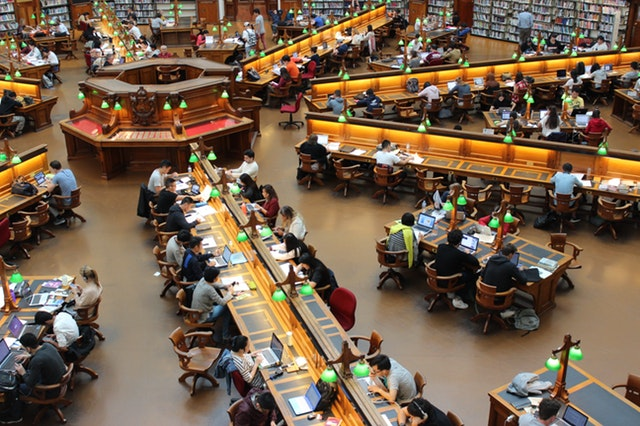library2.jpeg